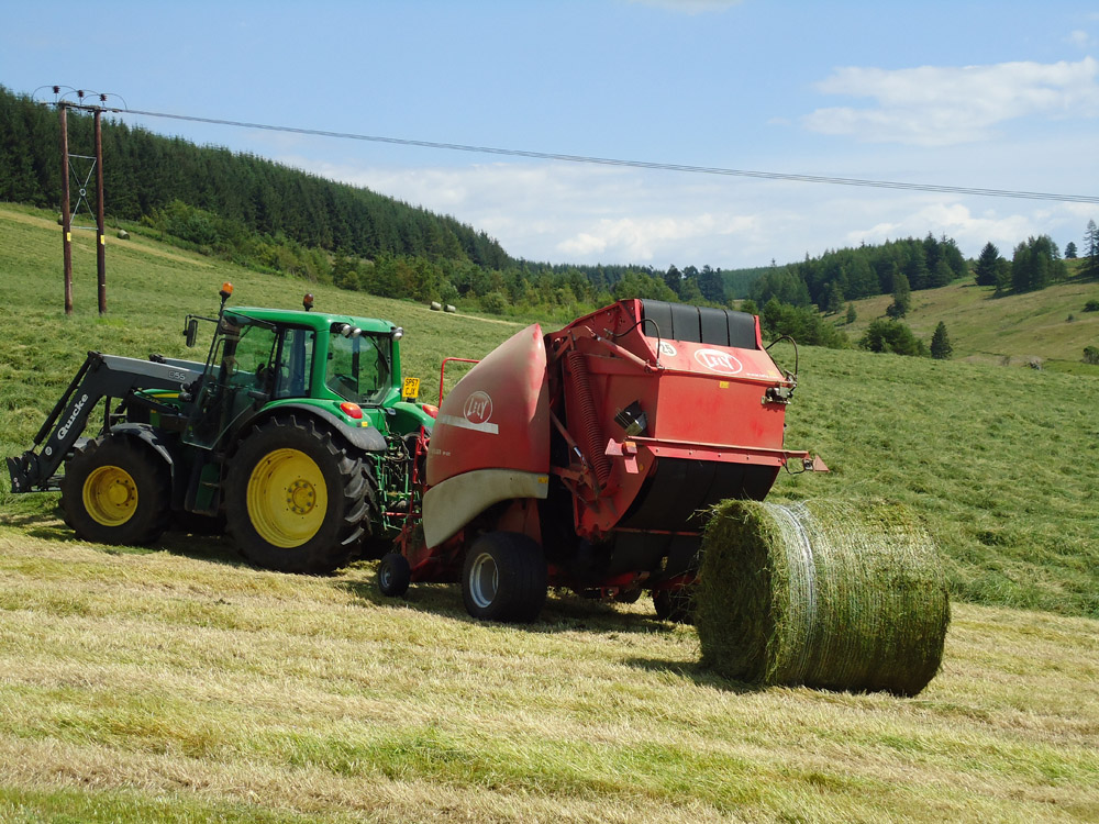 """Featured image for """"2-4 Year Intensive Cutting Or Grazing"""""""